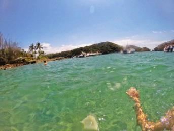 Ilha Grande 5